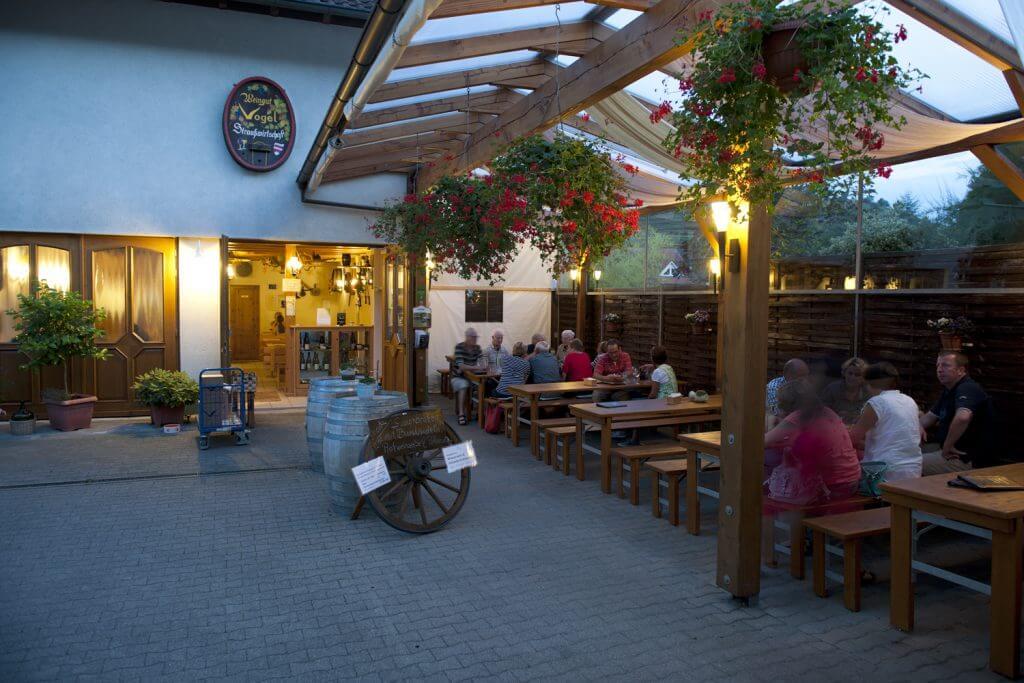 aussenbereich Vogelstrauße Weingut Vogel Oberbergen Kaiserstuhl Vogtsburg